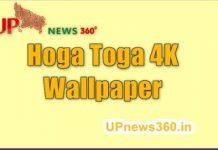 Hoga toga wallpaper