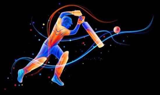 IPL Cricket Game